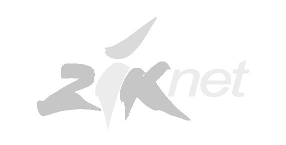 Ziknet